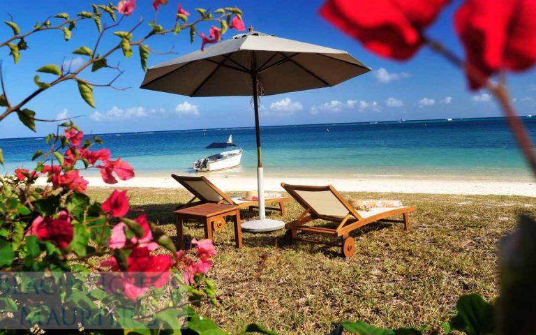 Villa-Stella-Maris-Gallery-beach-lounges-